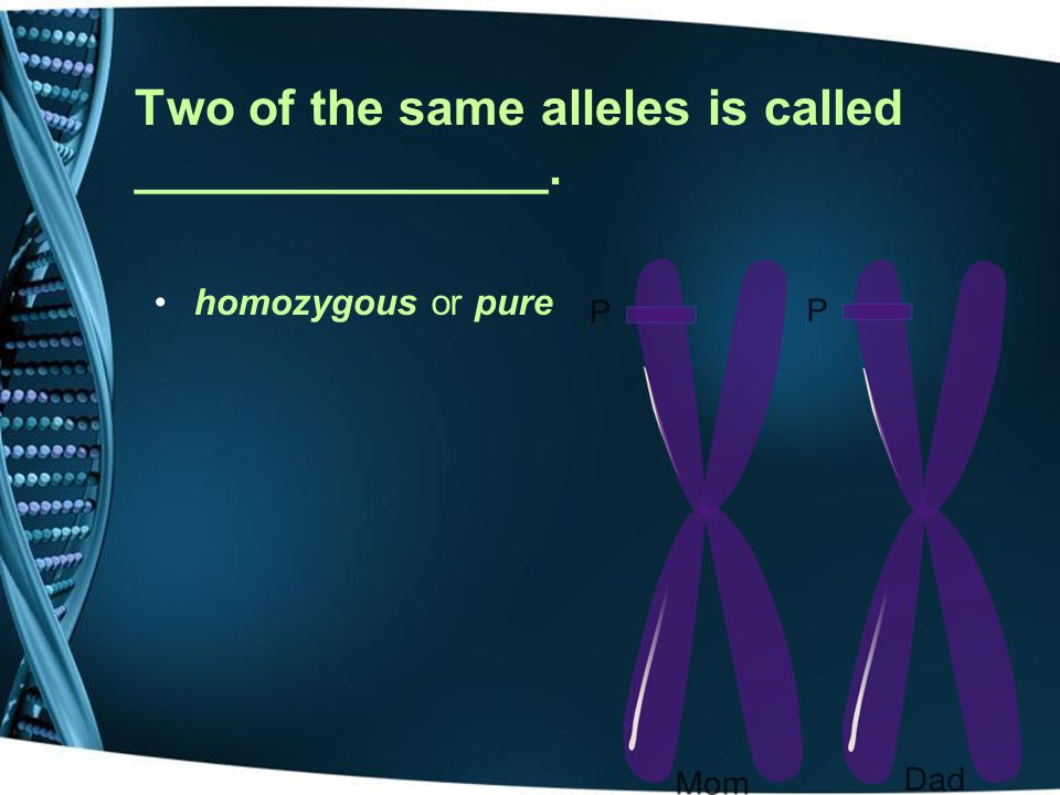 Two of the same alleles is called _______________.