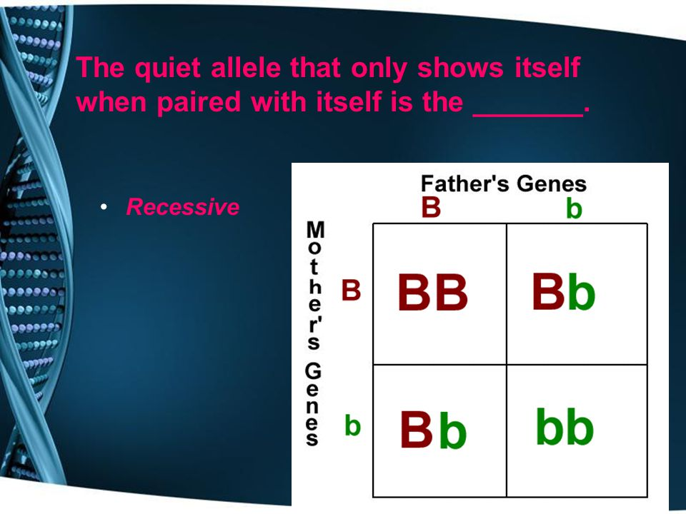 The quiet allele that only shows itself when paired with itself is the _______.