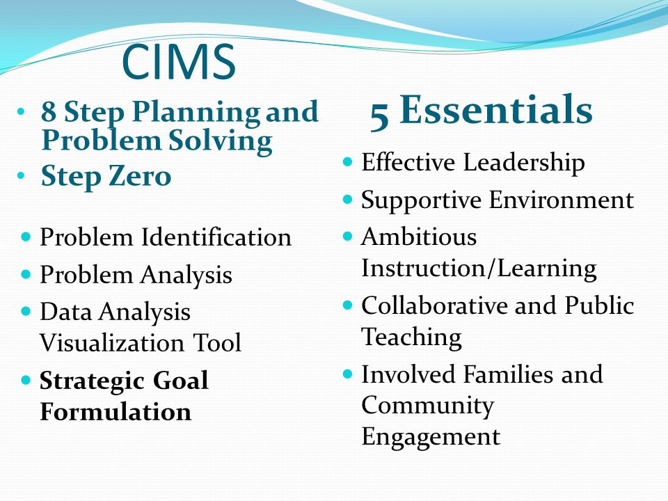 CIMS 5 Essentials 8 Step Planning and Problem Solving Step Zero