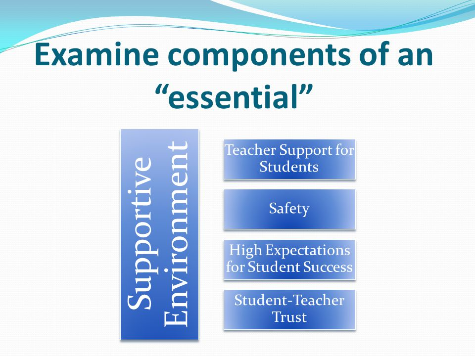 Examine components of an essential