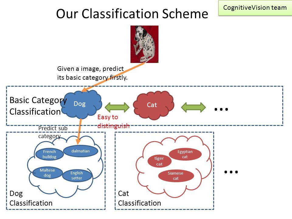 Our Classification Scheme