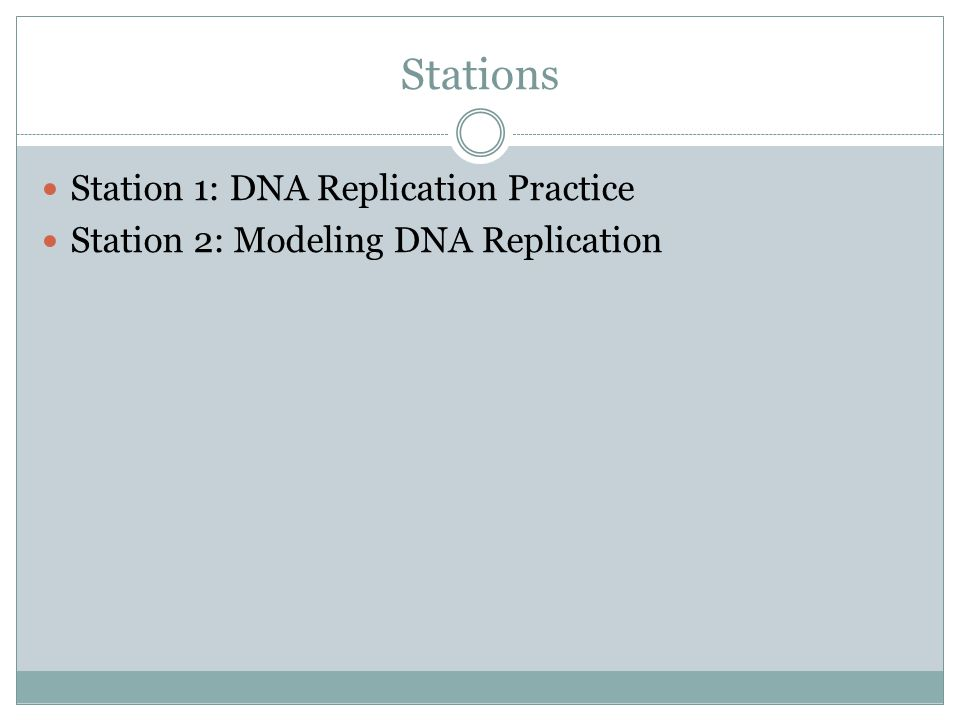 Stations Station 1: DNA Replication Practice