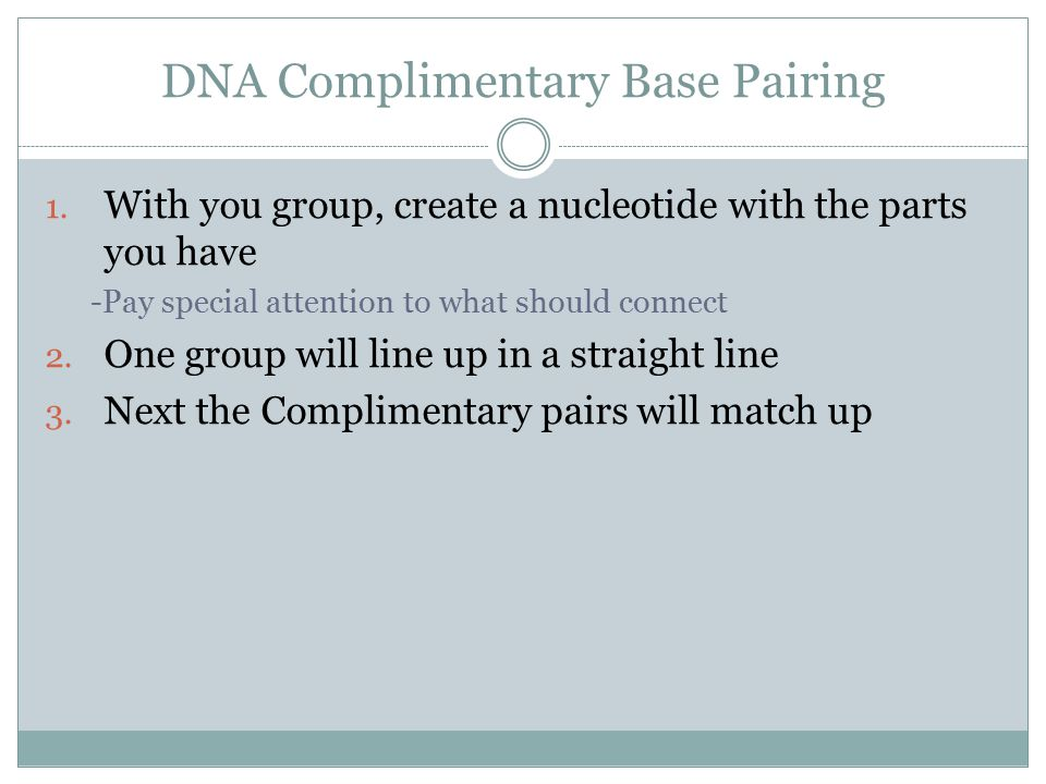 DNA Complimentary Base Pairing