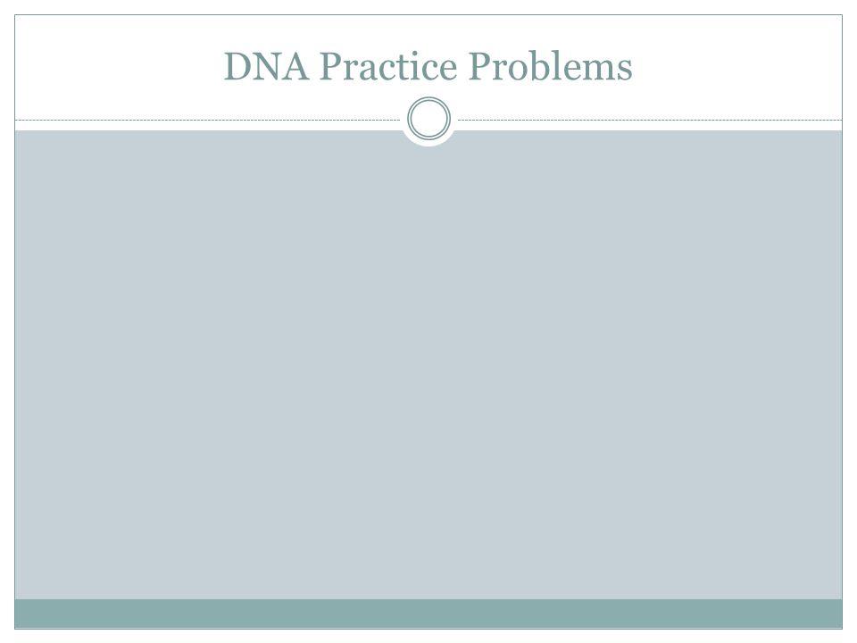 DNA Practice Problems