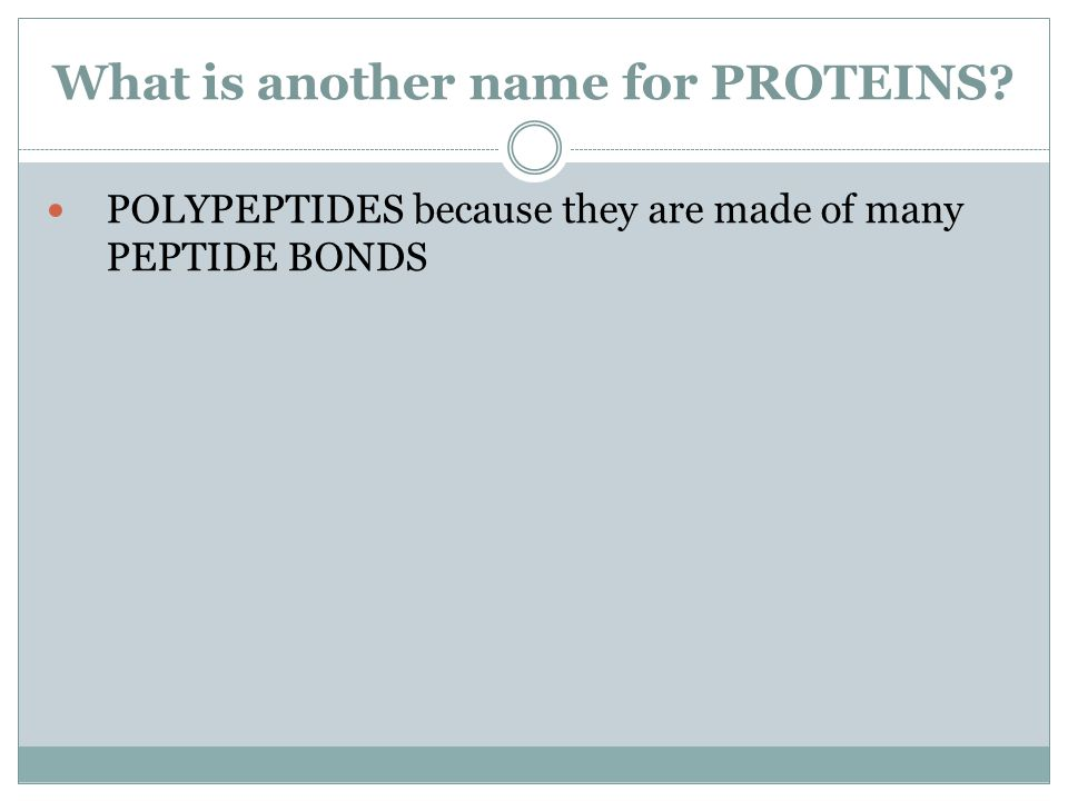 What is another name for PROTEINS