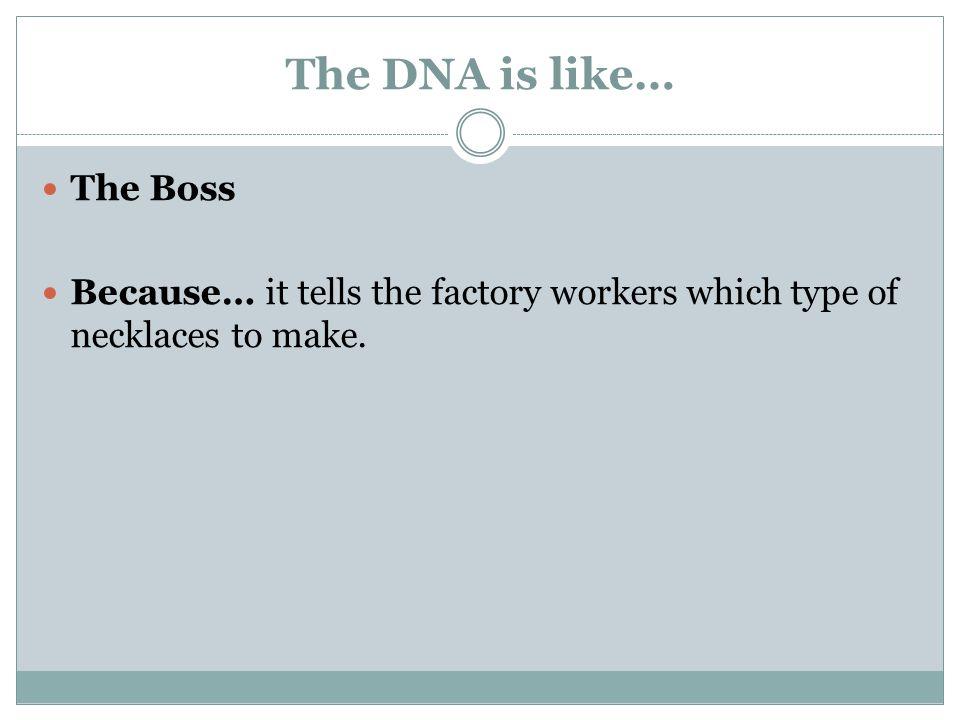 The DNA is like… The Boss