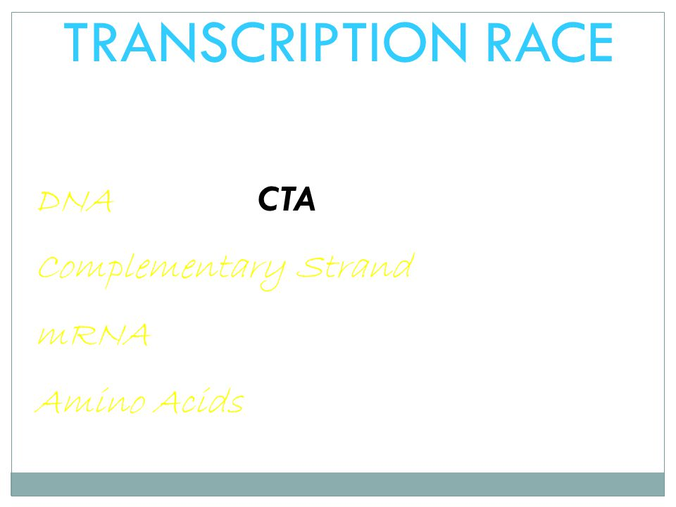 TRANSCRIPTION RACE DNA CTA Complementary Strand mRNA Amino Acids