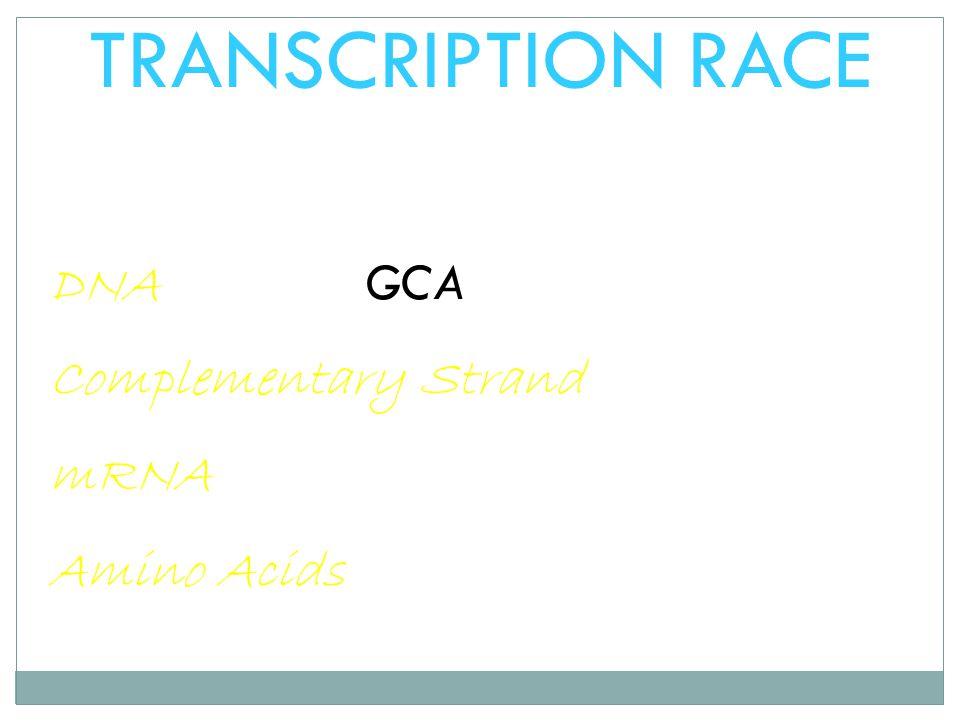 TRANSCRIPTION RACE DNA GCA Complementary Strand mRNA Amino Acids