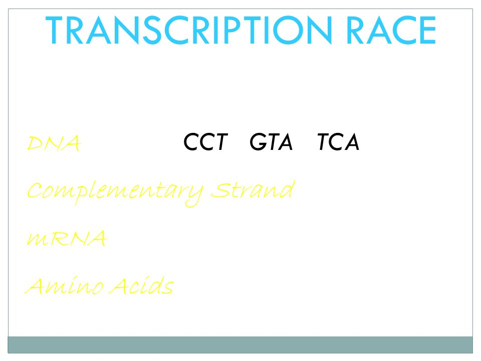 TRANSCRIPTION RACE DNA CCT GTA TCA Complementary Strand mRNA