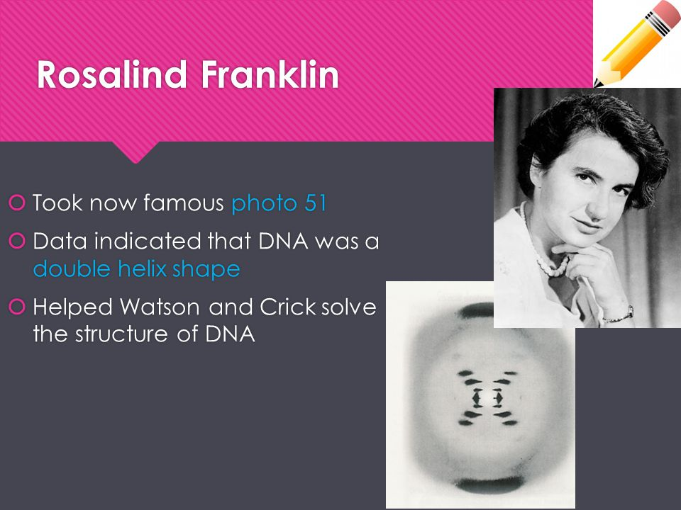 Rosalind Franklin Took now famous photo 51