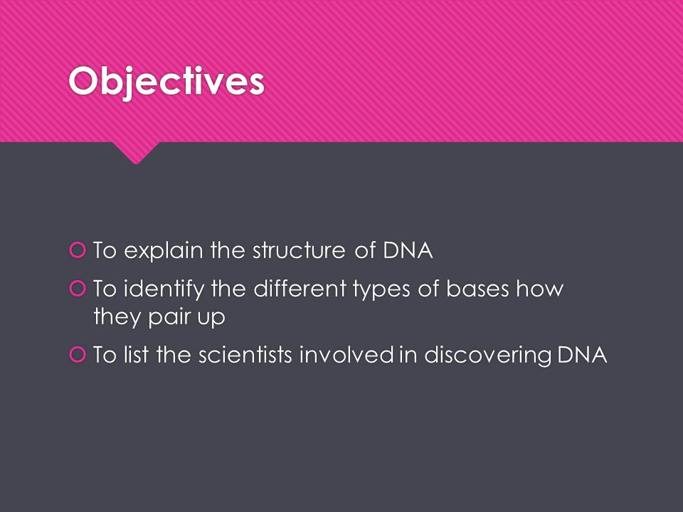 Objectives To explain the structure of DNA