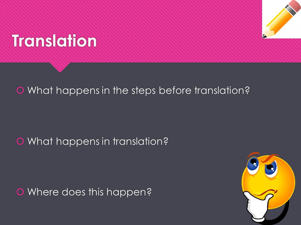 Translation What happens in the steps before translation