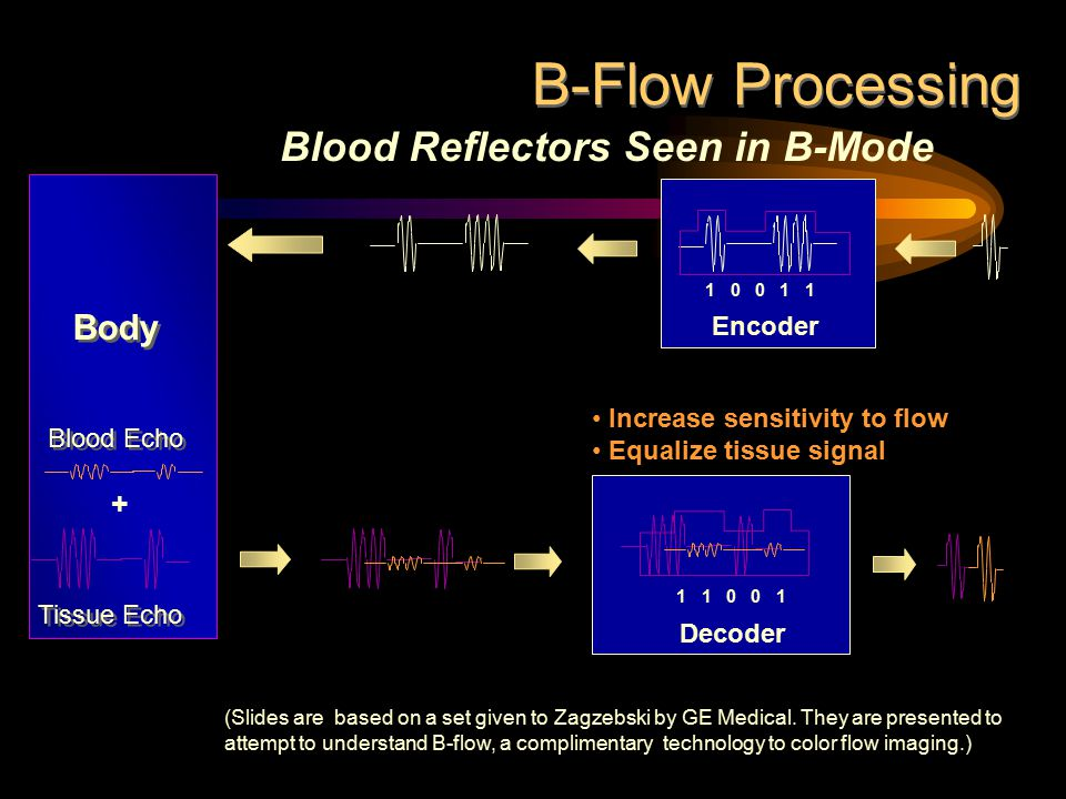 Blood Reflectors Seen in B-Mode