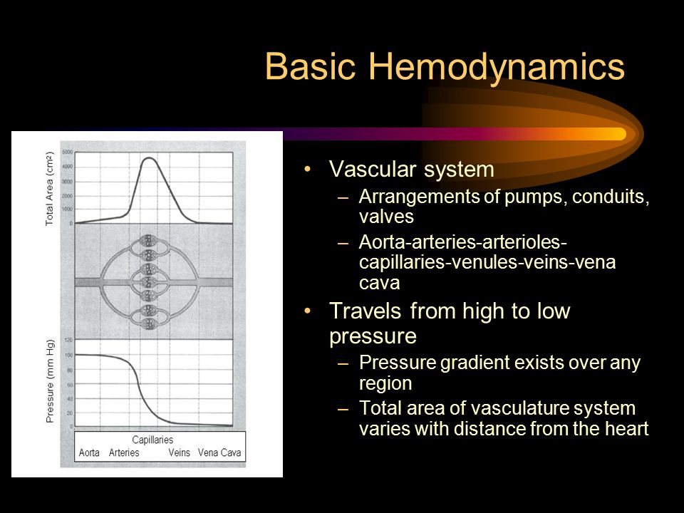 Basic Hemodynamics Vascular system Travels from high to low pressure