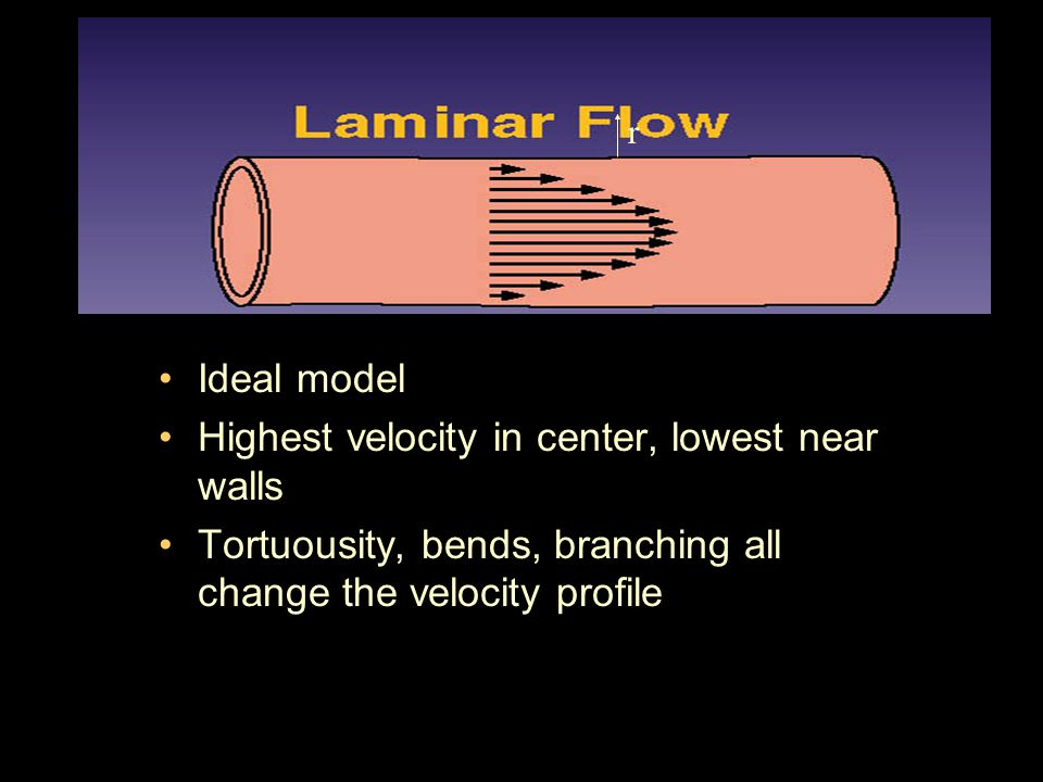 Laminar Flow Ideal model Highest velocity in center, lowest near walls