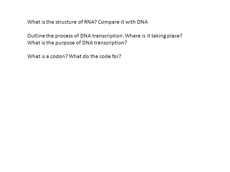 What is the structure of RNA Compare it with DNA