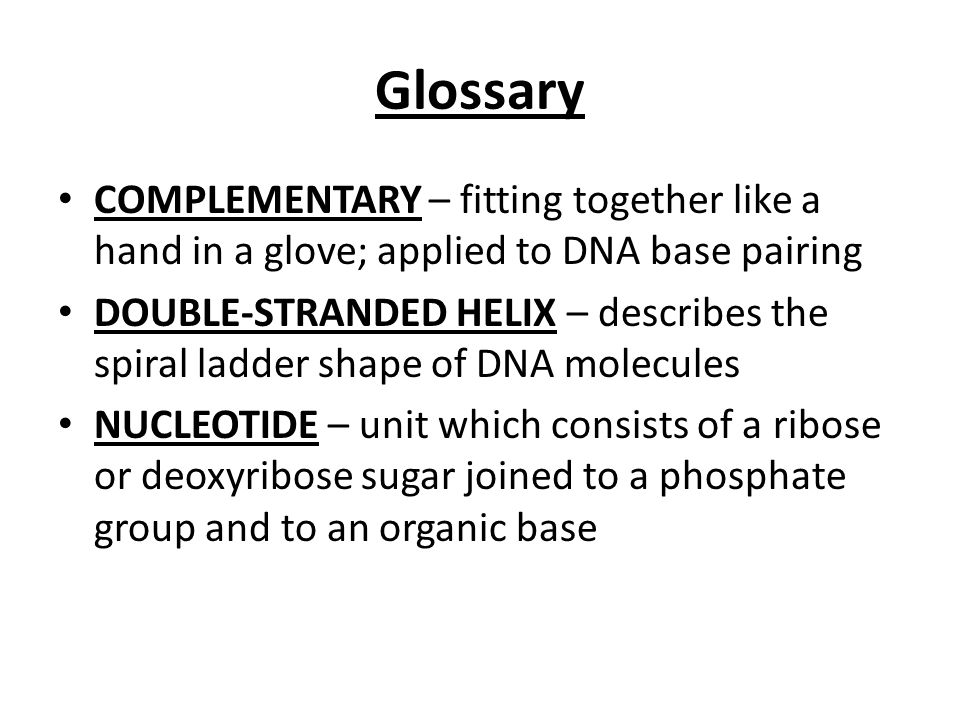 Glossary COMPLEMENTARY – fitting together like a hand in a glove; applied to DNA base pairing.