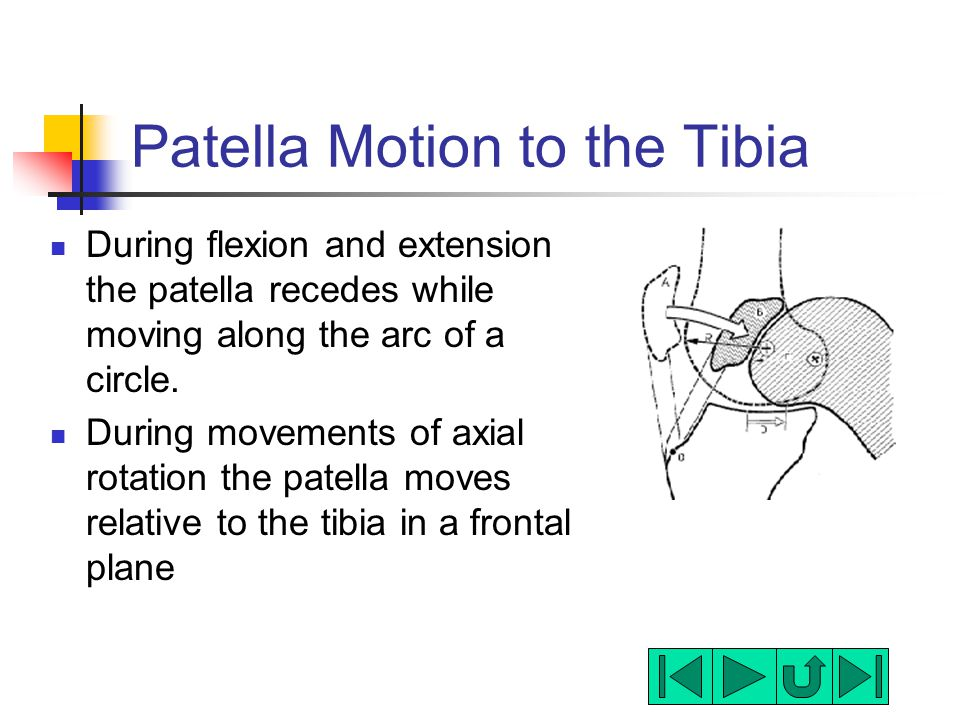 Patella Motion to the Tibia