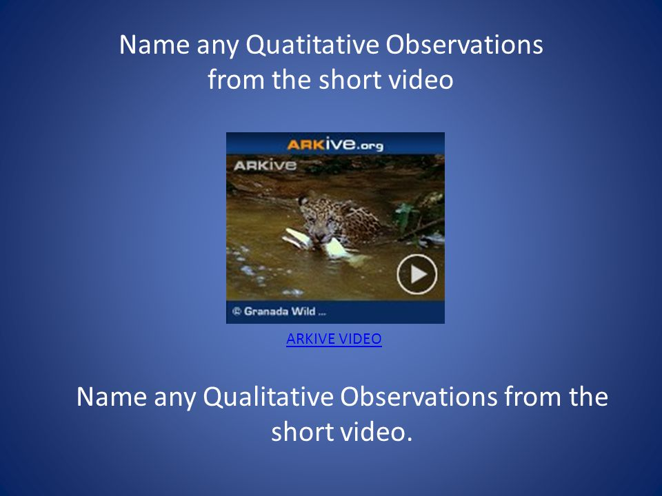 Name any Quatitative Observations from the short video
