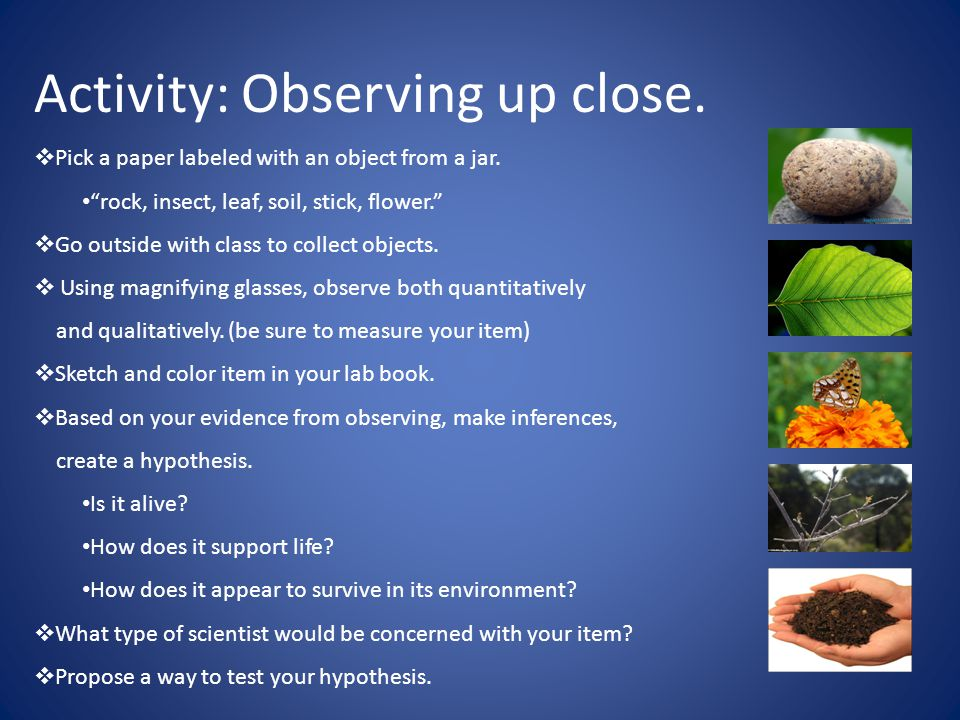 Activity: Observing up close.