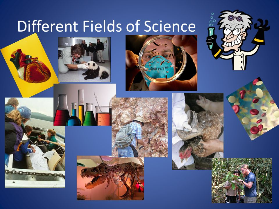 Different Fields of Science