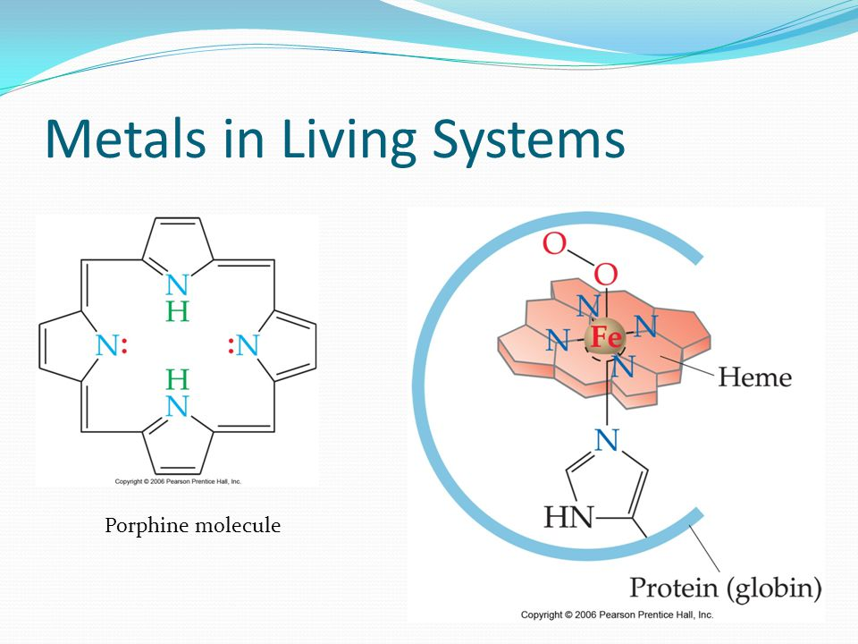 Metals in Living Systems
