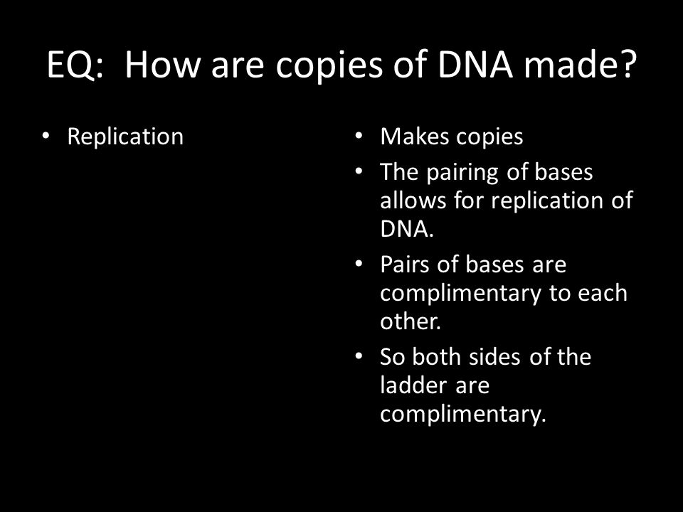 EQ: How are copies of DNA made
