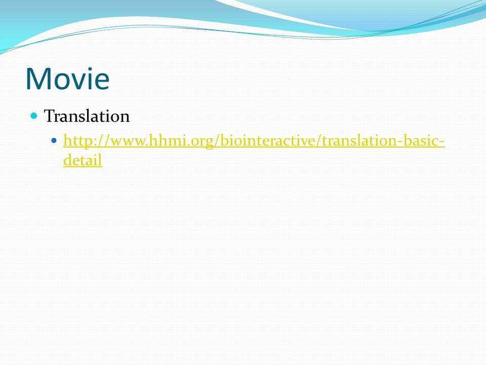 Movie Translation http://www.hhmi.org/biointeractive/translation-basic-detail
