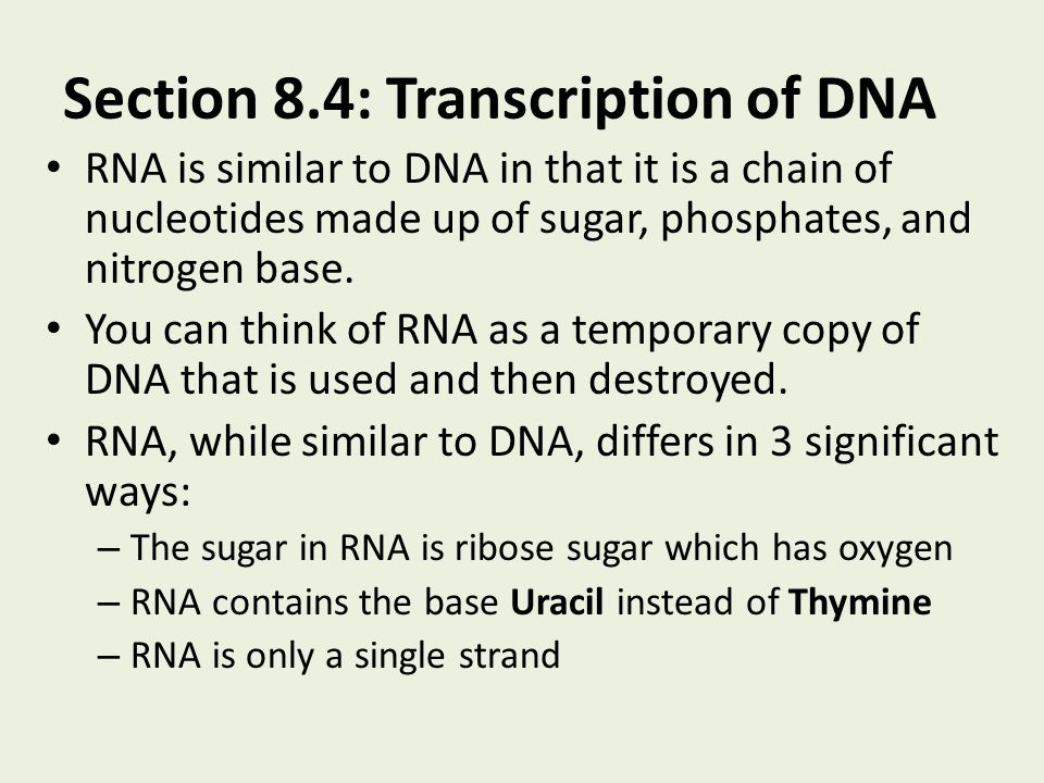 Section 8.4: Transcription of DNA