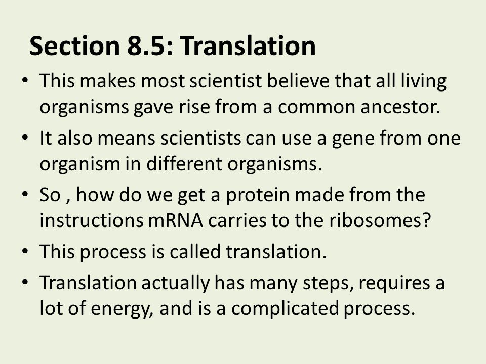 Section 8.5: Translation This makes most scientist believe that all living organisms gave rise from a common ancestor.