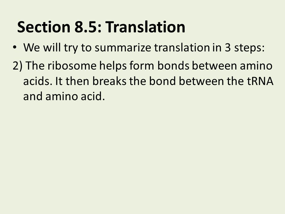 Section 8.5: Translation We will try to summarize translation in 3 steps: