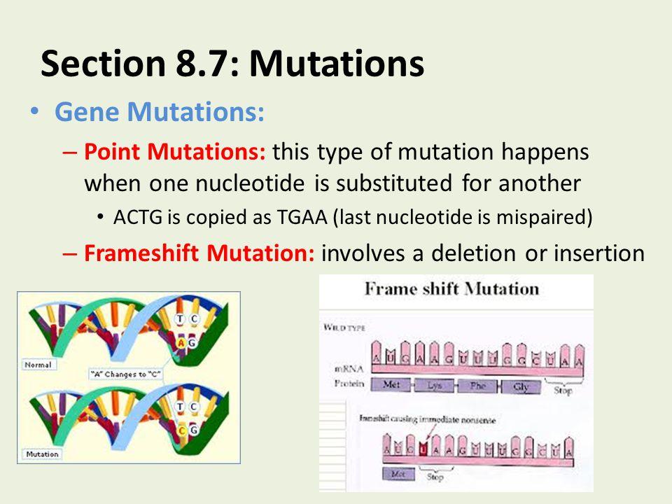 Section 8.7: Mutations Gene Mutations: