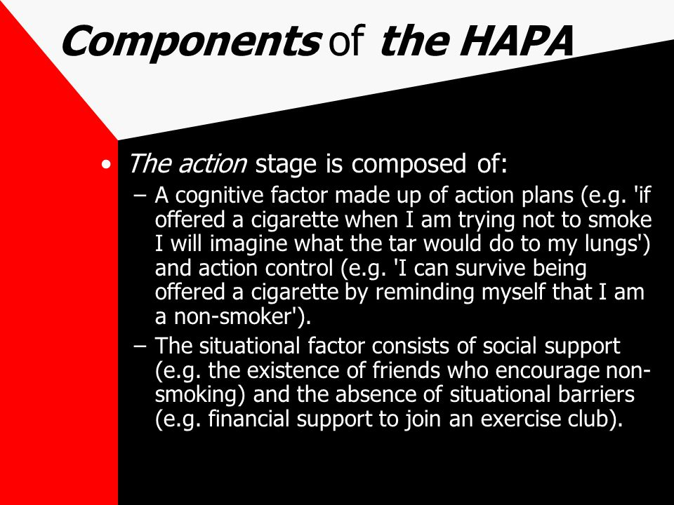 Components of the HAPA The action stage is composed of: