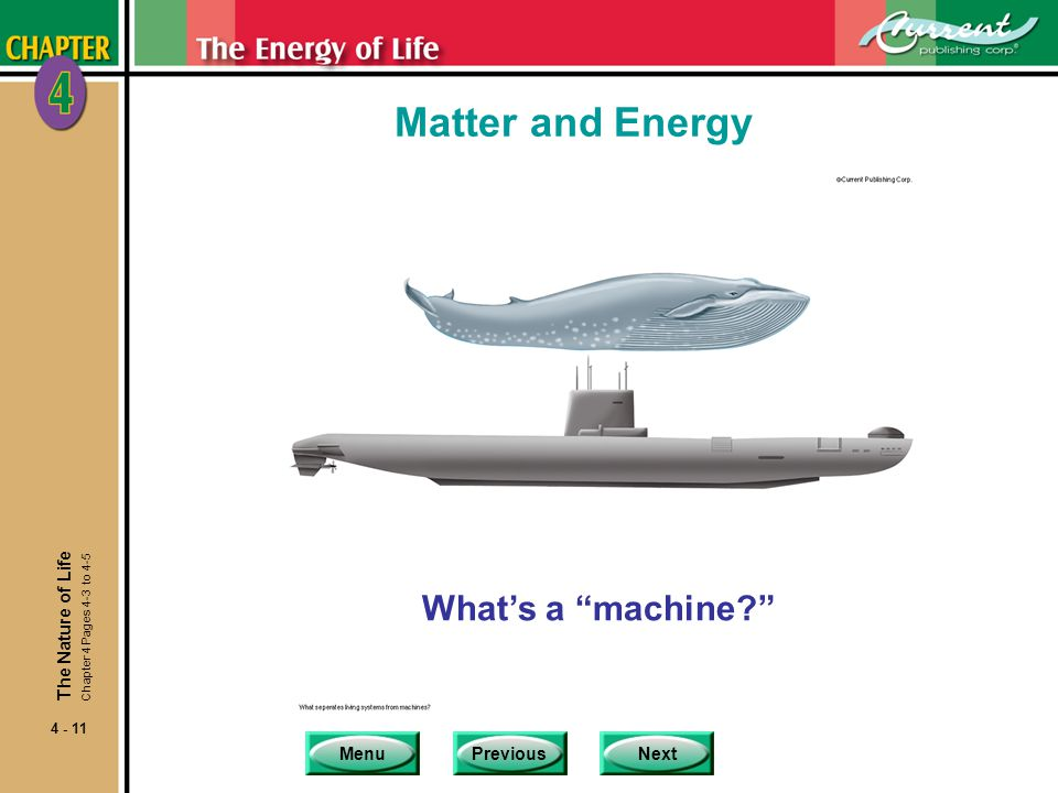 Matter and Energy What's a machine The Nature of Life