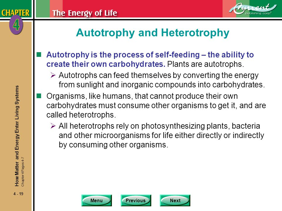 Autotrophy and Heterotrophy