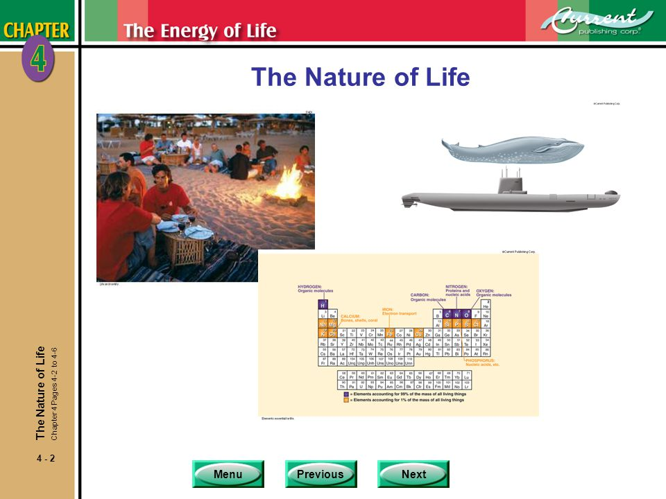 The Nature of Life The Nature of Life Chapter 4 Pages 4-2 to 4-6