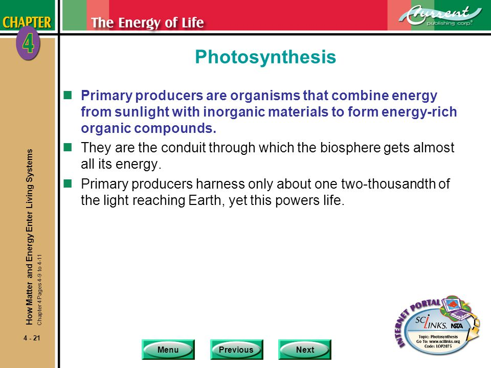 Photosynthesis Primary producers are organisms that combine energy from sunlight with inorganic materials to form energy-rich organic compounds.