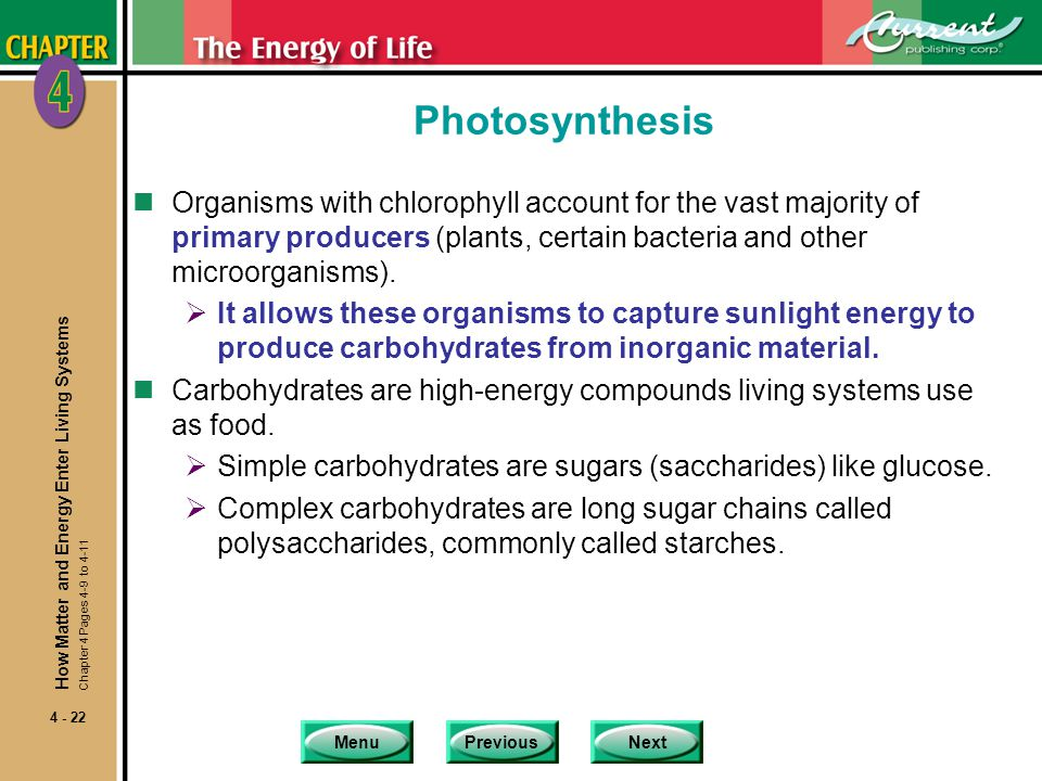 Photosynthesis Organisms with chlorophyll account for the vast majority of primary producers (plants, certain bacteria and other microorganisms).