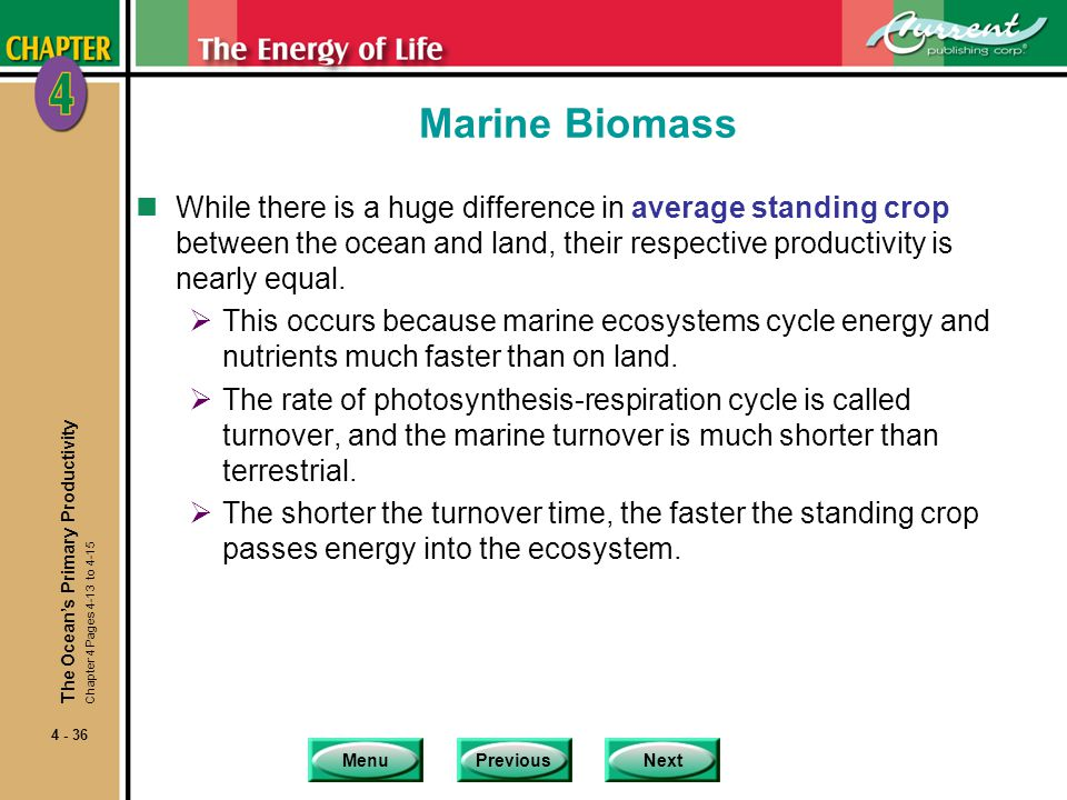 Marine Biomass While there is a huge difference in average standing crop between the ocean and land, their respective productivity is nearly equal.
