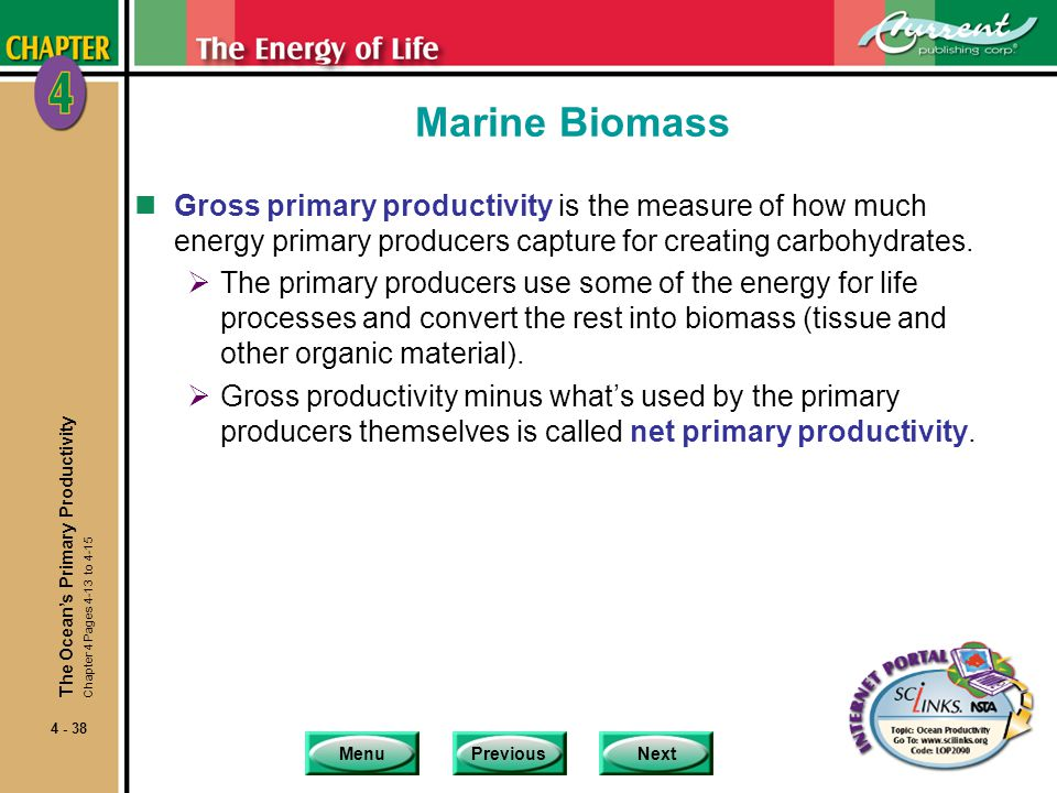 Marine Biomass Gross primary productivity is the measure of how much energy primary producers capture for creating carbohydrates.