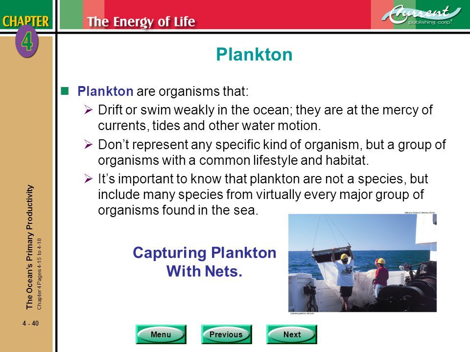 Capturing Plankton With Nets.
