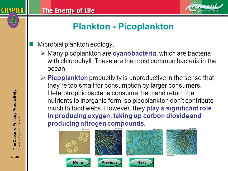Plankton - Picoplankton