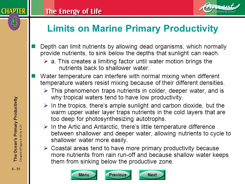 Limits on Marine Primary Productivity
