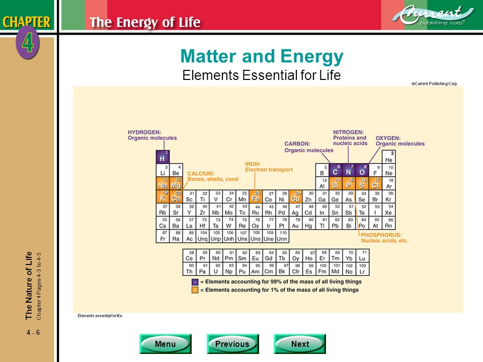 Matter and Energy Elements Essential for Life