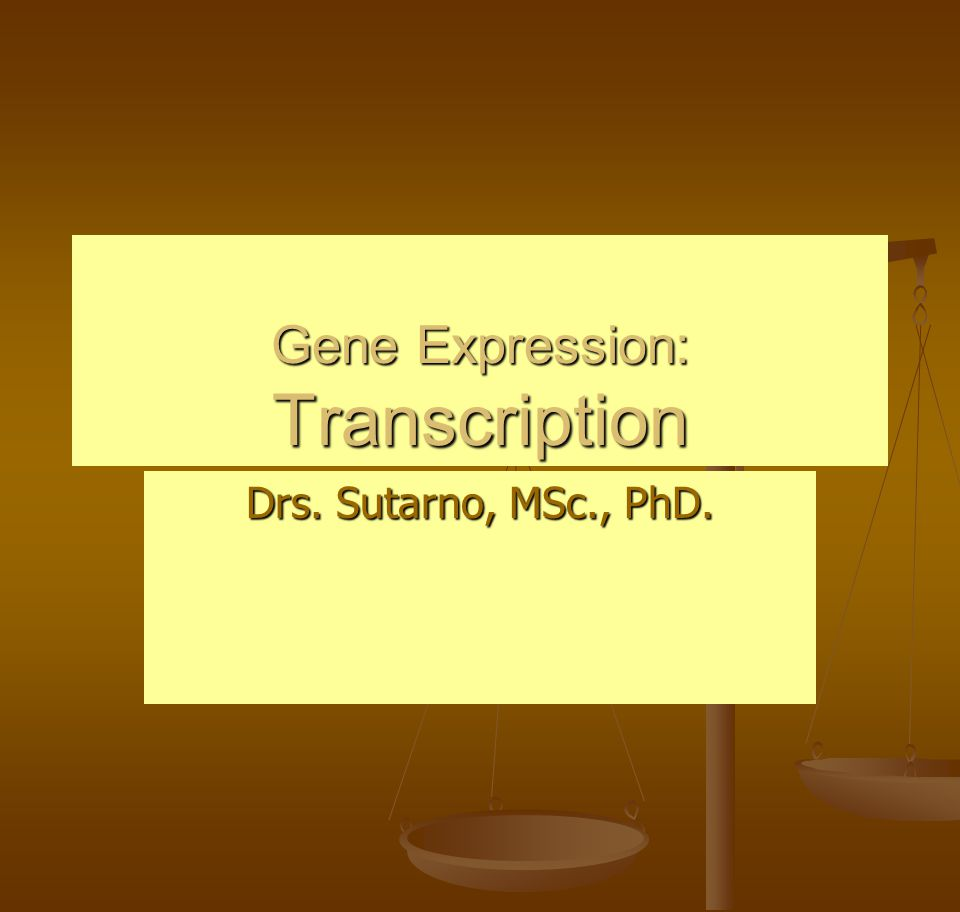 Gene Expression: Transcription