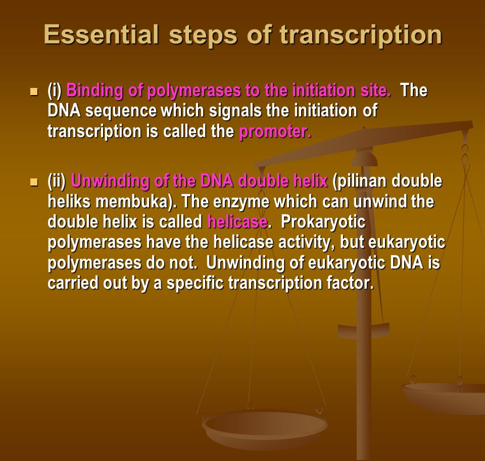 Essential steps of transcription