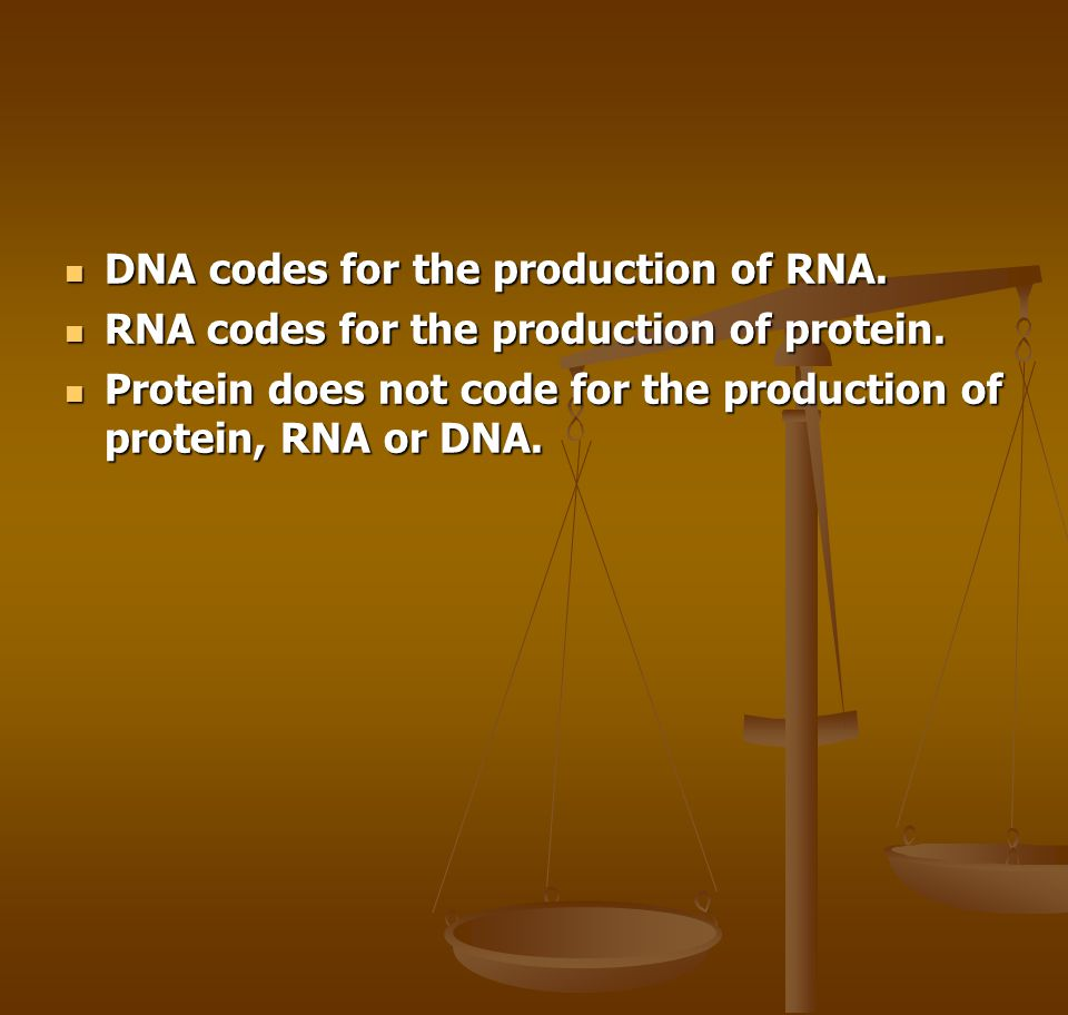 DNA codes for the production of RNA.