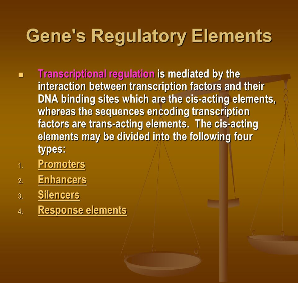 Gene s Regulatory Elements