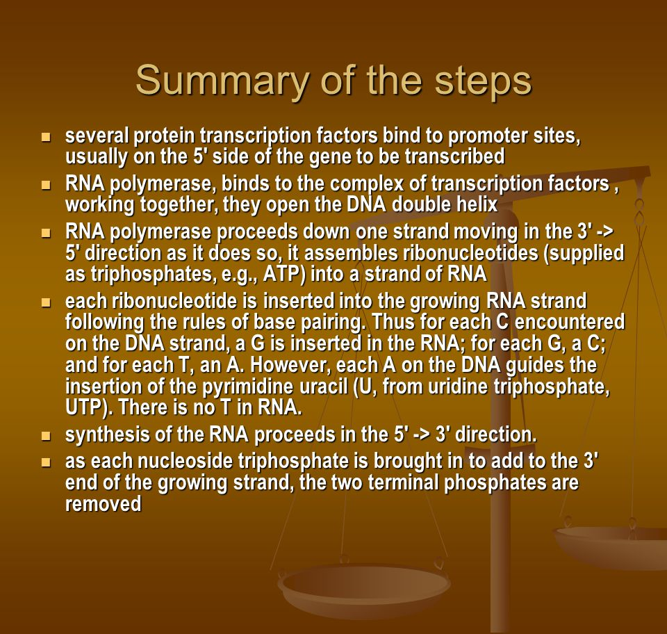 Summary of the steps several protein transcription factors bind to promoter sites, usually on the 5 side of the gene to be transcribed.