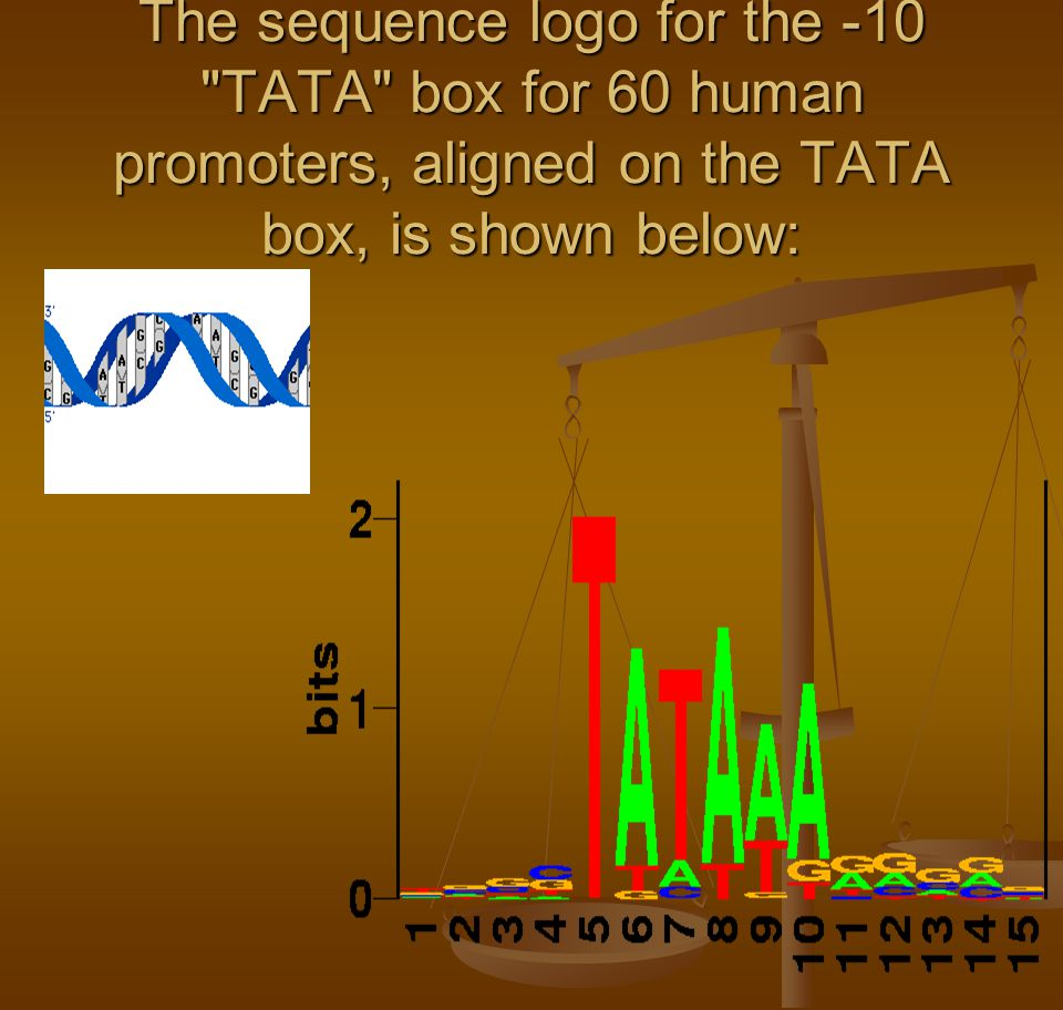 The sequence logo for the -10 TATA box for 60 human promoters, aligned on the TATA box, is shown below: